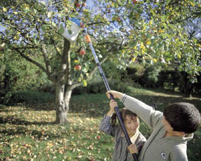 Nie wieder gießen! Der Automatische Garten der Firma Gartenwicht übernimmt das für Sie! - Frank Westermaier berät Sie! Gardena Sprinkleranlagen und Gardena Versenkregner! Wir gießen Ihren Garten in Olching Emmering und im Raum fürstenfeldbruck!