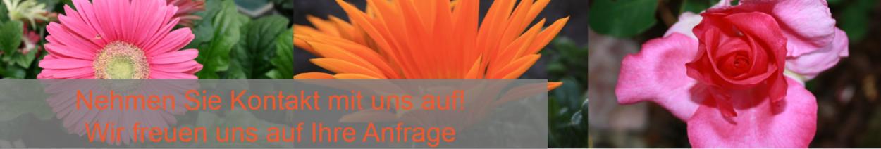 Mauern, Gartenmauer, Blumenbeet, Hochbeet, Terassenbau, Fürstenfeldbruck, FFB, Gartenbau FFB